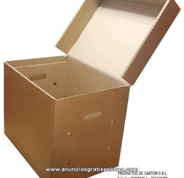 caja archivadora tapa incorporada